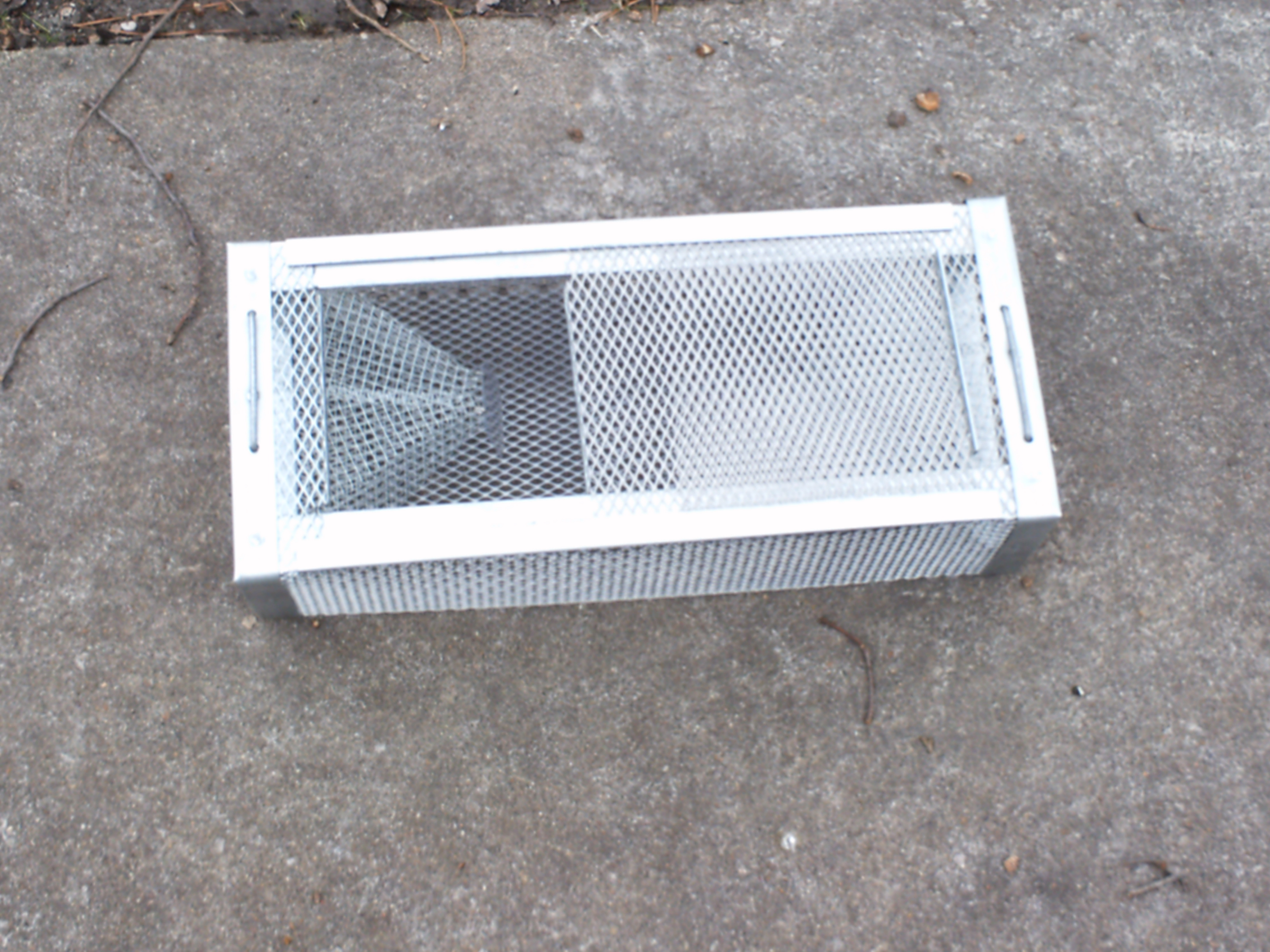 Snake traps bugs amp turf 4 less services inc blog
